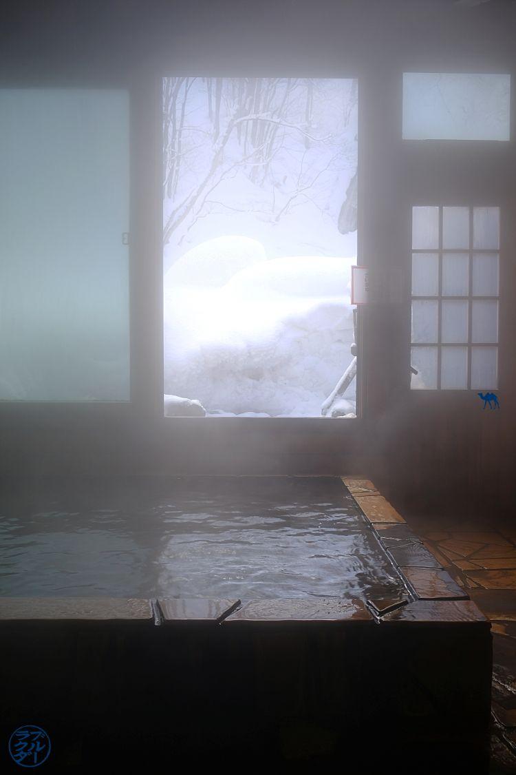 Le Chameau Bleu - Blog Voyage Onsen Japon - Bain chaud de Aoni Onsen - Voyage dans le Tohoku Japon