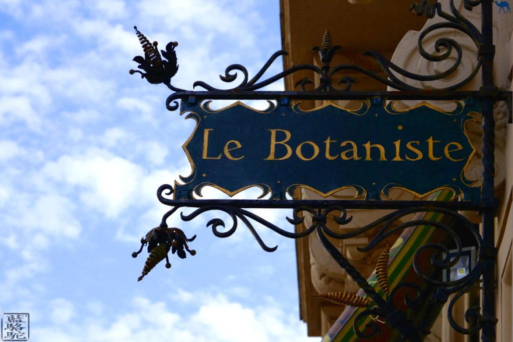 Le Chameau Bleu - Blog Voyage Restaurant Gand Belgique - Week End en Belgique - Restaurant Végan Le Botaniste