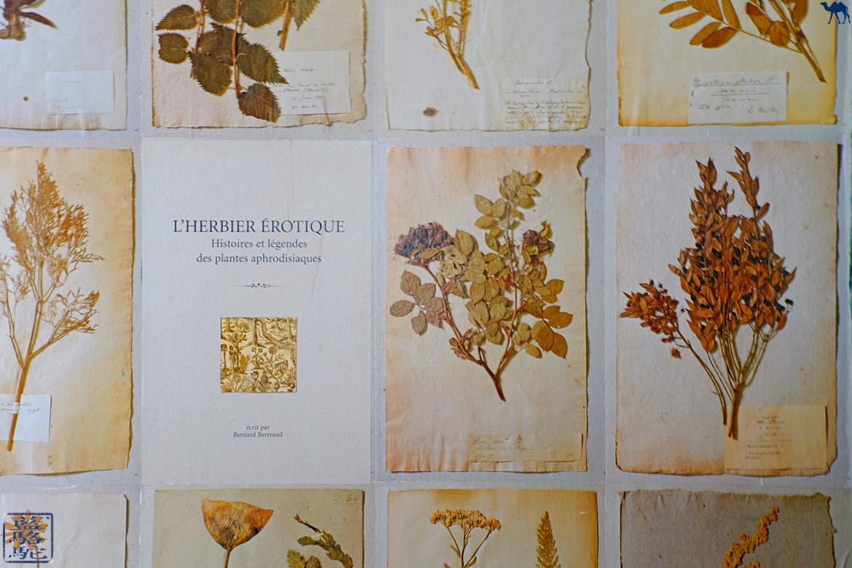 Le Chameau Bleu -Blog Voyage Restaurant Gand Belgique - Herbier érotique du botaniste Gand Flandres