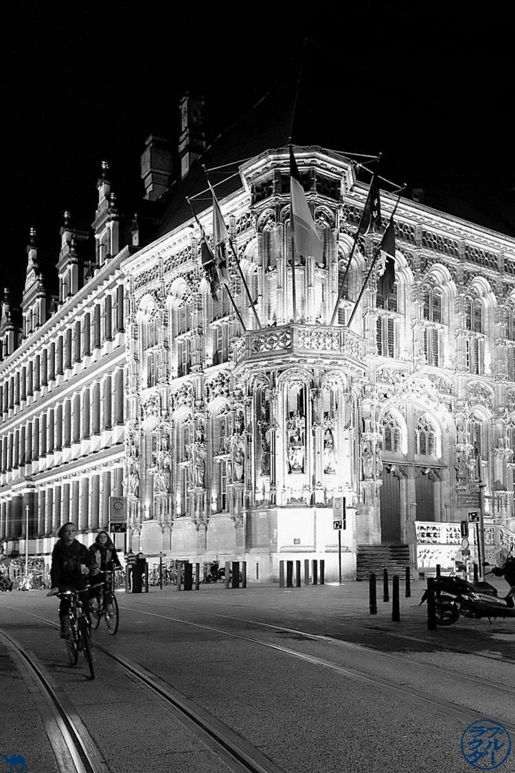 Le Chameau Bleu - Blog Escapade àGand- Hotel de ville illuminé de Gand