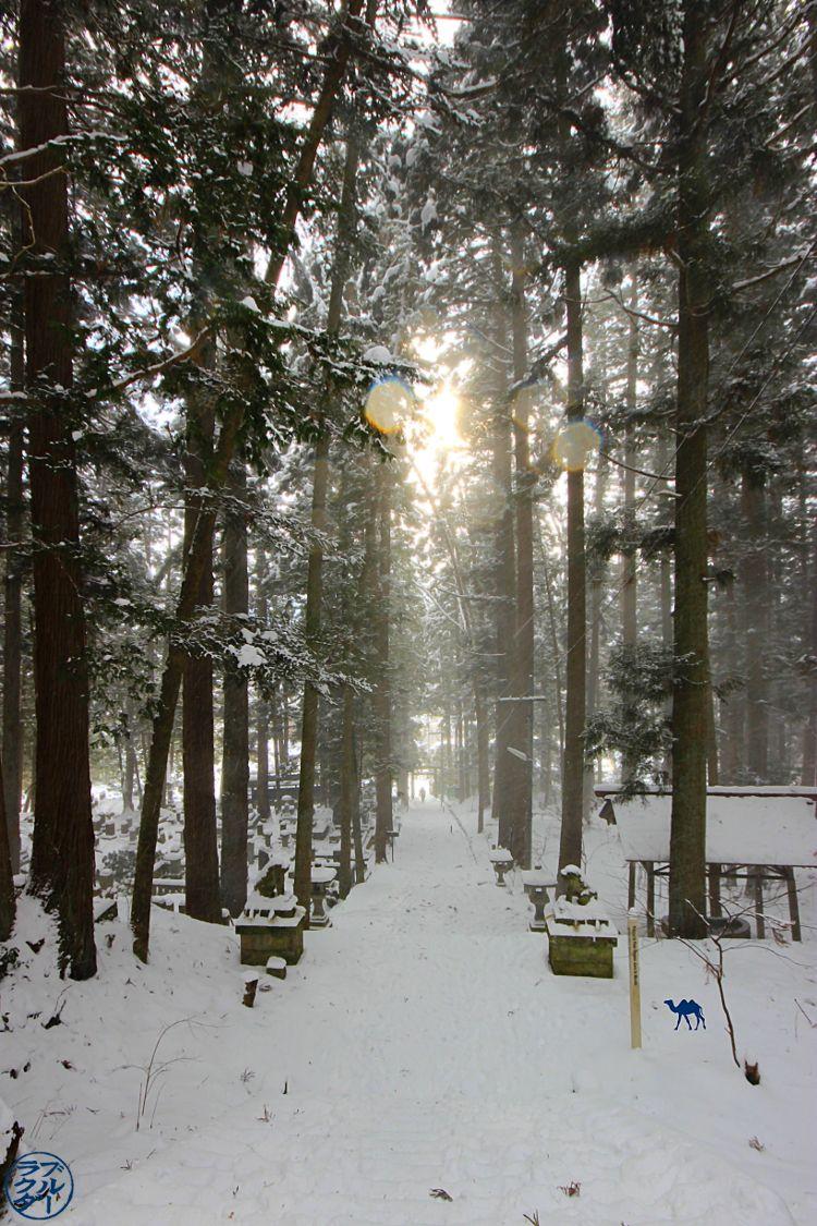 Forêt de Takayama Gifu - Vacances dans les alpes japonaises - Le Chameau Bleu Blog Voyage Takayama