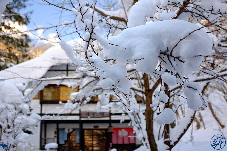 Le Chameau Bleu - Blog Voyage Japon - Onsen Japon - Hotspring Aoni Onsen dans le Tohoku Nord du Japon
