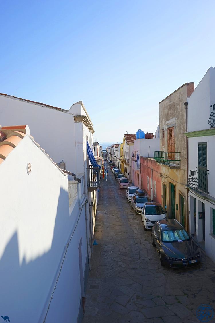 Le Chameau Bleu - Blog Voyage Calasetta Sardaigne - Toits de Calasetta Italie