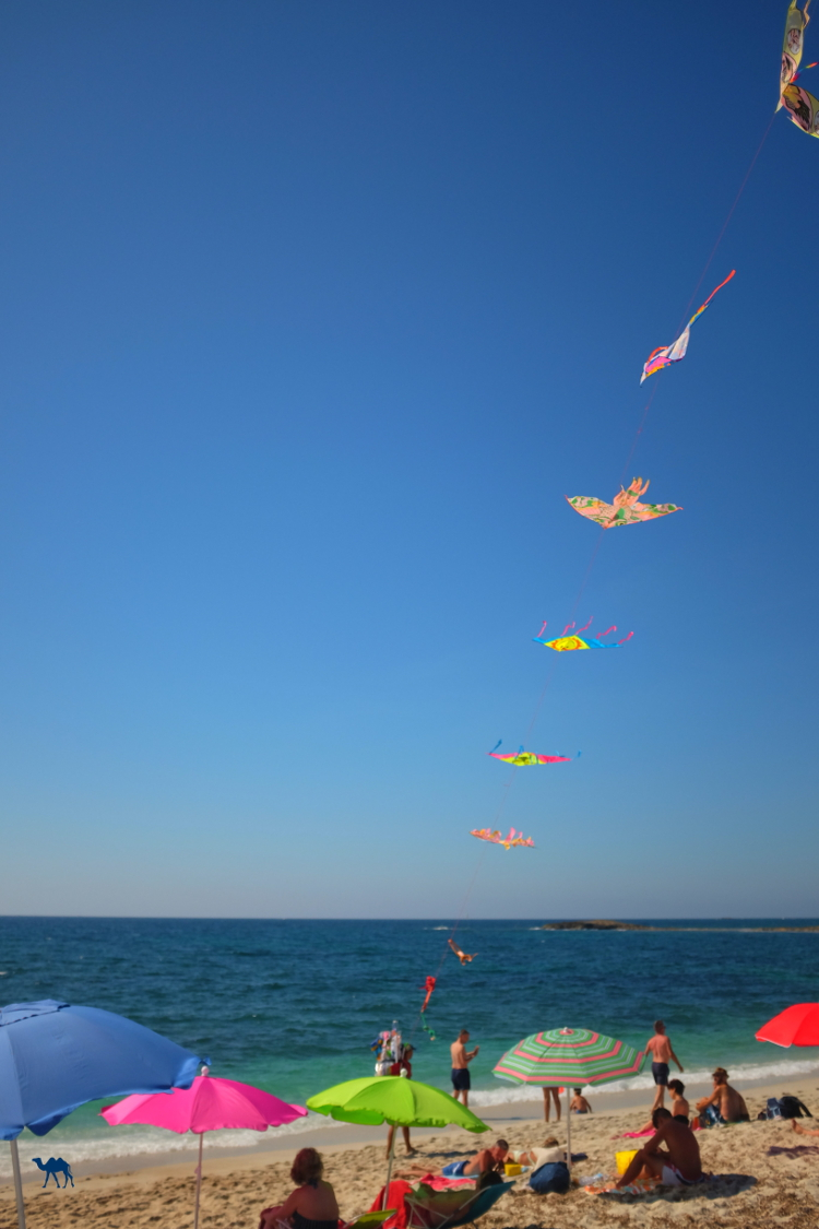 Le Chameau Bleu - Blog Voyage Sardaigne - La plage aux cerf volants Sardaigne Plage d'Italie