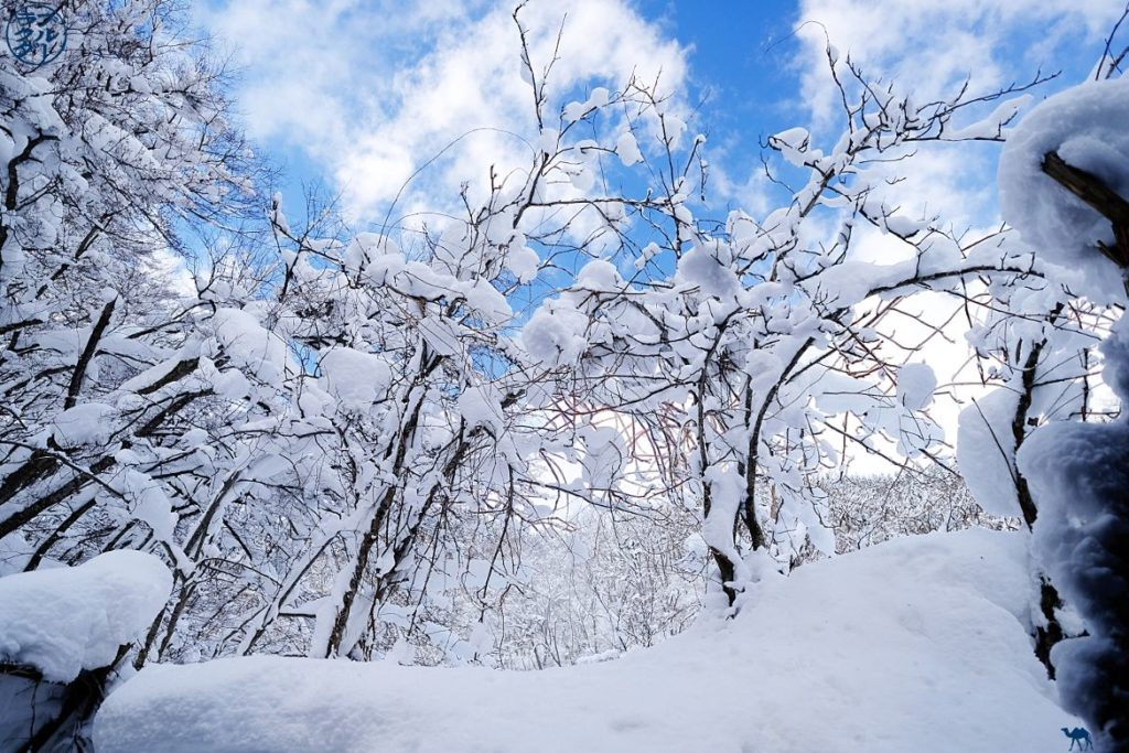 Le Chameau Bleu - Blog Voyage Japon - Voyage dans le Tohoku Nord du Japon - Aoni Onsen