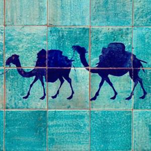 Chameau Bleu à Khiva en Ouzbékistan