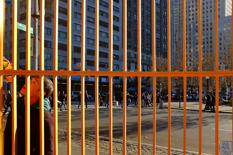 Le Chameau Bleu - New York - Manhattan Oeuvre de Ai Wei Wei artiste Chinois