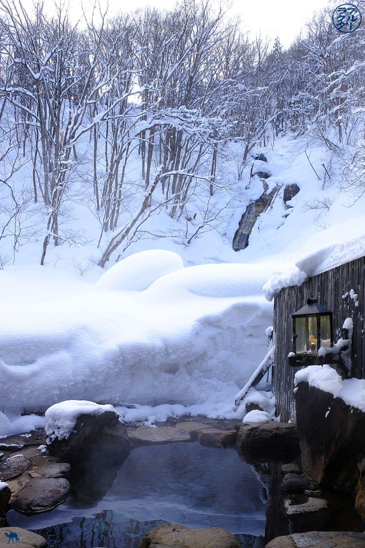 Le Chameau Bleu - Blog Voyage Japon - Aoni Onsen dans le Tohoku dans le nord du Japon - Voyage