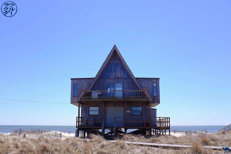 Le chameau bleu- Blog voyage -Long-Island-Fire Island-davis park