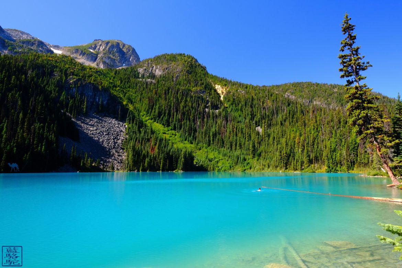 Le Chameau Bleu - Blog Voyage Canada Colombie Britannique -Joffre Lake