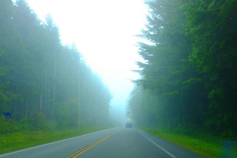 Le Chameau Bleu - Blog Voyage Canada Colombie Britannique -Sur Les Routes de Vancouver Island