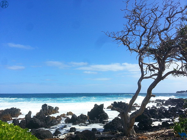 Le Chameau Bleu - Blog Voyage Hawaii - Photo Maui - plage d'hawaii Côte déchiquetée à Maui