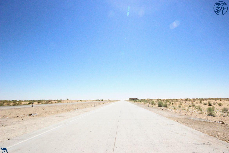 Le Chameau Bleu - Blog Voyage Ouzbékistan - Desert de Kyzylkum entre Khiva et Boukhara