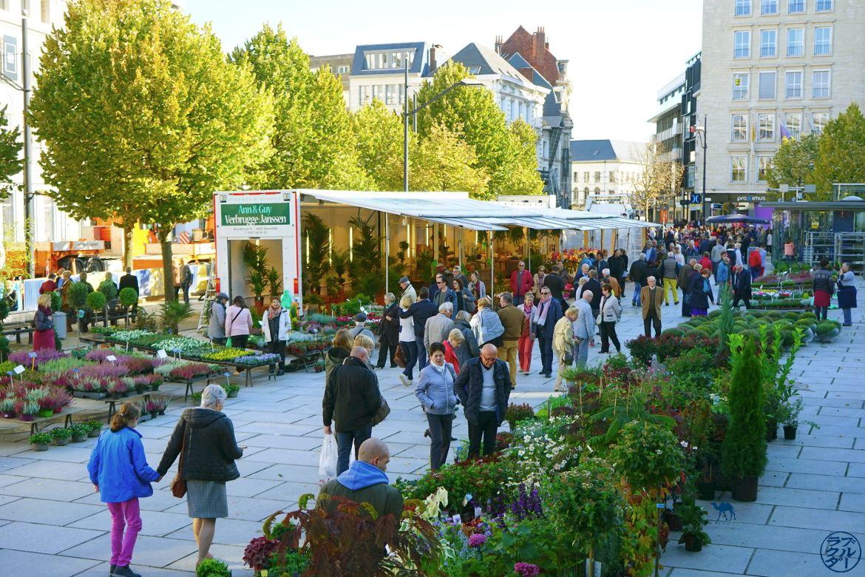 Blog Voyage Gand Belgique - Marché aux Fleurs de Gand Belgique Flandres Belges Ghent