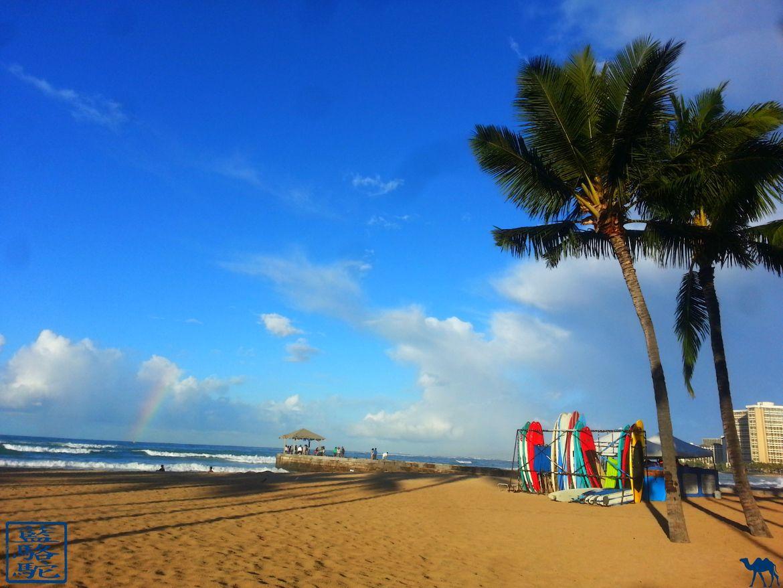Le Chameau Bleu - Blog Voyage Hawaii - Voyage à Hawaii - Ile OAHU