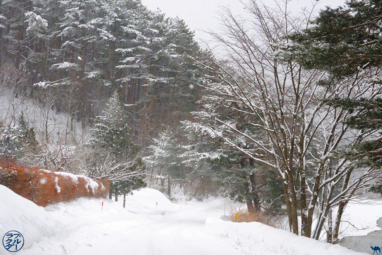 Le Chameau Bleu - Tourisme dans le Tohoku - Voyage au Japon - Lac de Tazawa