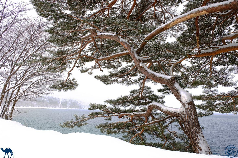 Japon - Yokote, Tazawako & Co - Le Chameau Bleu - Blog Voyage