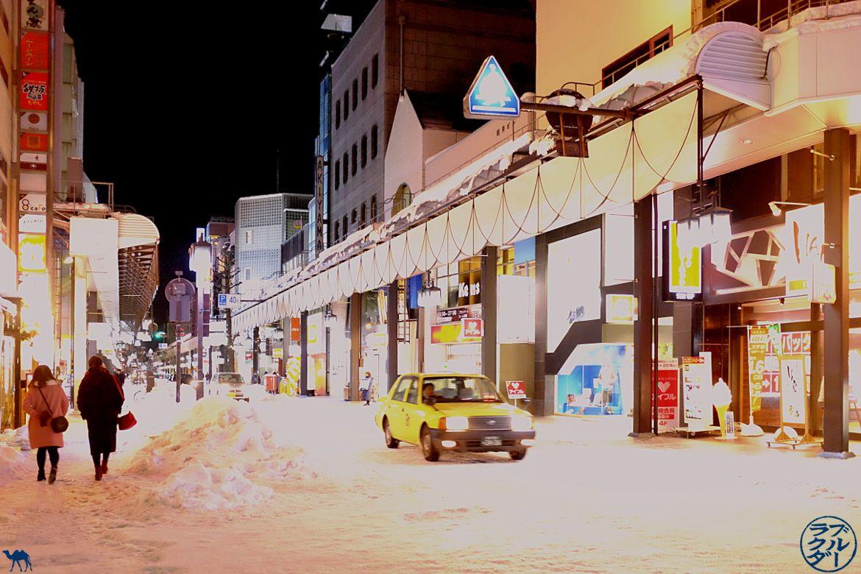 Le Chameau Bleu - Séjour à Morioka Capitale de l'Iwate - Tohoku - Japon