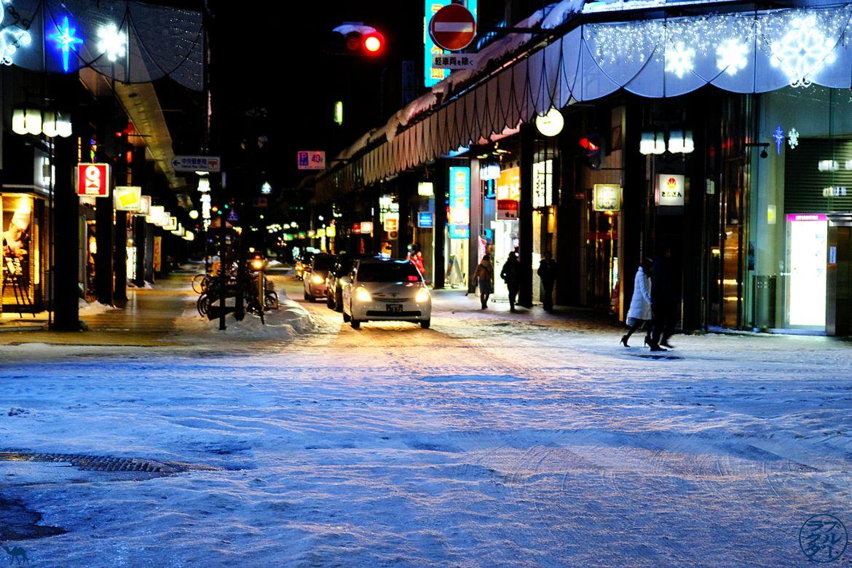 Voyage dans l'Iwate Tohoku - Rue de Morioka - Morioka Ville du Japon - Périple au Japon