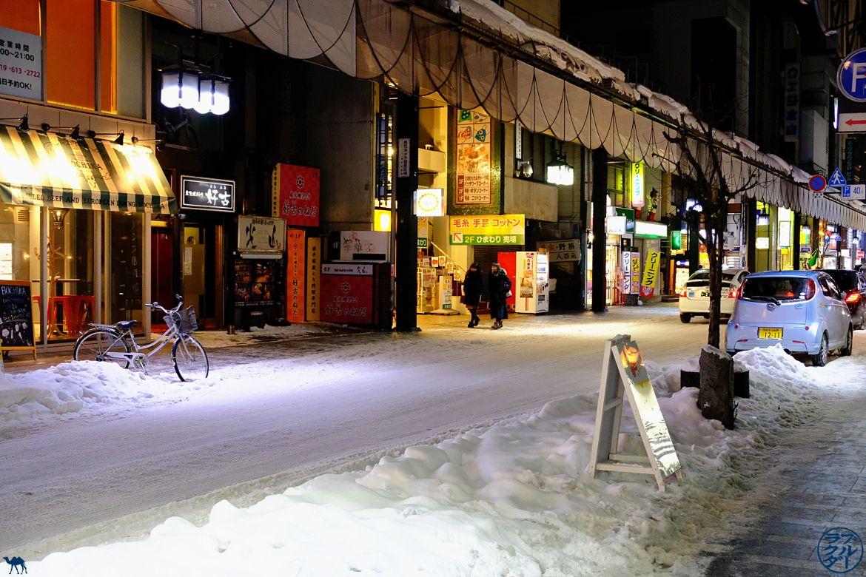 Le Chameau Bleu - Rue de Morioka sous la neige - Voyage dans le Tohoku Séjour au Japon