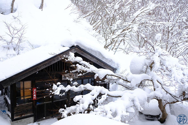Le Chameau Bleu - Blog Voyage Aoni Onsen Japon - Hotspring Aoni Onsen dans le Tohoku Nord du Japon