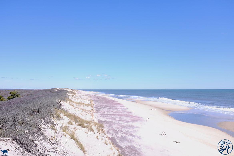 Le chameau bleu- Blog voyage -Long-Island-Fire island - WeekEnd à Long Island