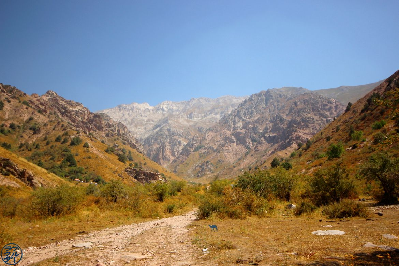 Les montagnes de Chimgan - Voyage en Ouzbékistan