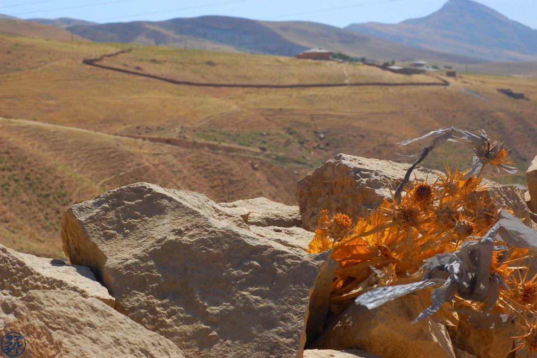 Vue depuis une des montagnes de Boysun - Voyage Ouzbékistan