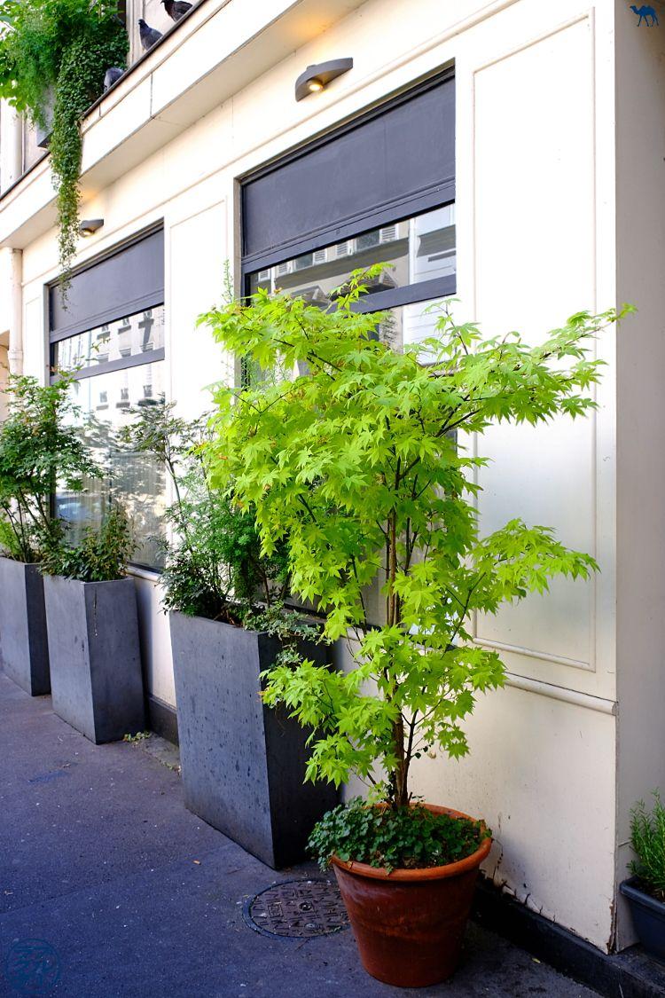 Le Chameau Bleu - Blog Gastronomie et Voyage - Devanture du Restaurant gastronomique Toyo à Paris