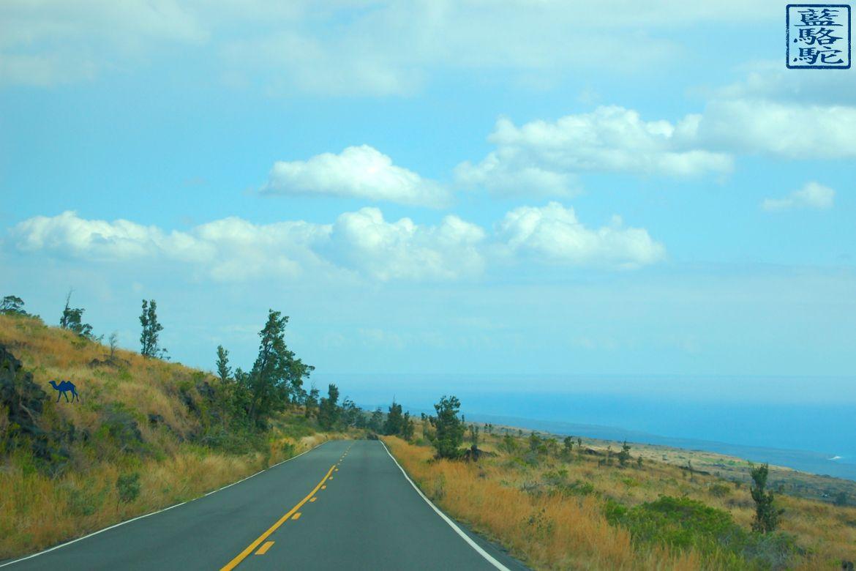 Le Chameau Bleu - Blog Voyage Hawaii - Instantanés Hawaïens - route d'Hawaii