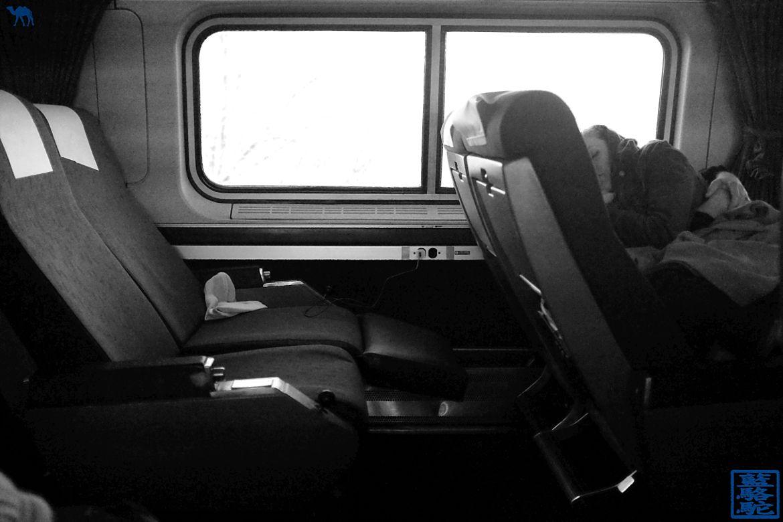 Le Chameau Bleu - La dormeuse du train pour Chicago depuis New York