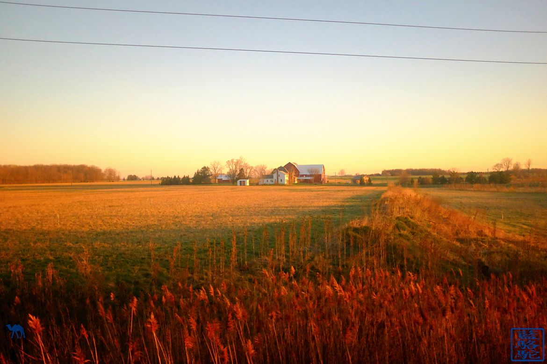 Le Chameau Bleu - Vue d'une ferme depuis le train pour Chicago USA