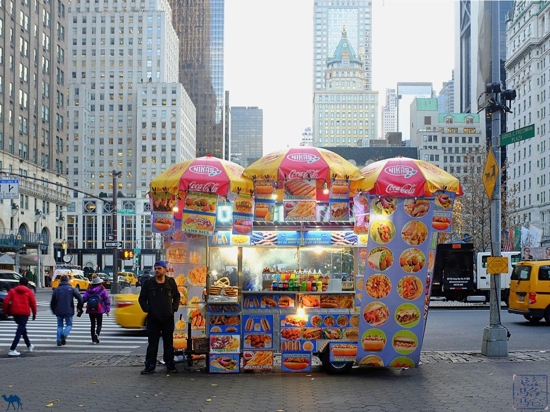 Blog Voyage NewYork - Vendeur dans les rues de Manhattan New York