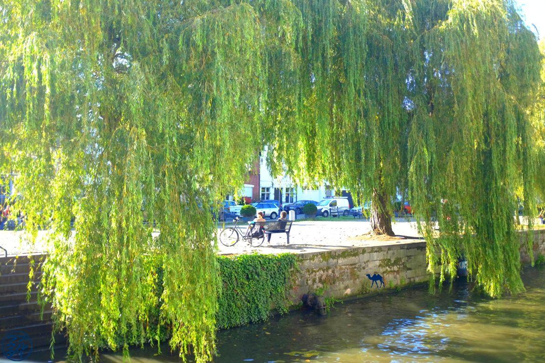 Blog Voyage Gand Belgique - Gand au mois d'octobre Week end à Gand Belgique Gand au mois d'octobre