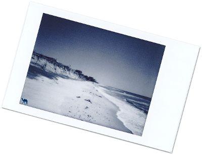 Le chameau bleu- Blog voyage -Long-Island-Fire island