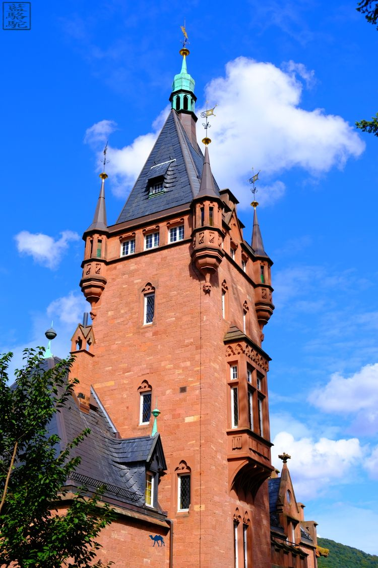 Le Chameau Bleu - Blog Voyage Heidelberg Allemagne - Maison d'Heidelberg - Voyage en Allemagne