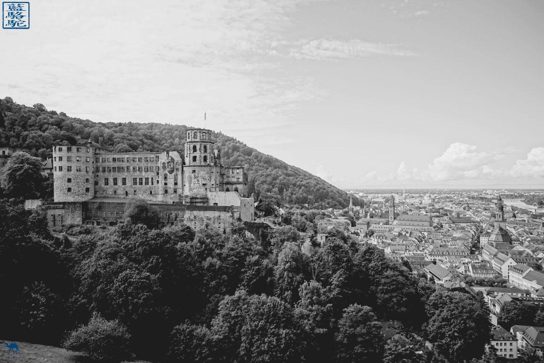 Le Chameau Bleu - Blog Voyage Heidelberg Allemagne - Chateau d'Heidelberg - Voyage en Allemagne
