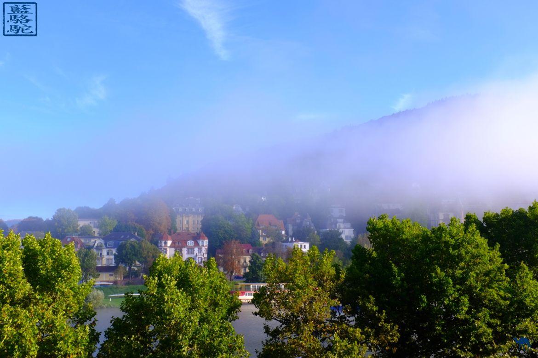 Le Chameau bleu - Blog Voyage Heidelberg Allemagne - brume allemande