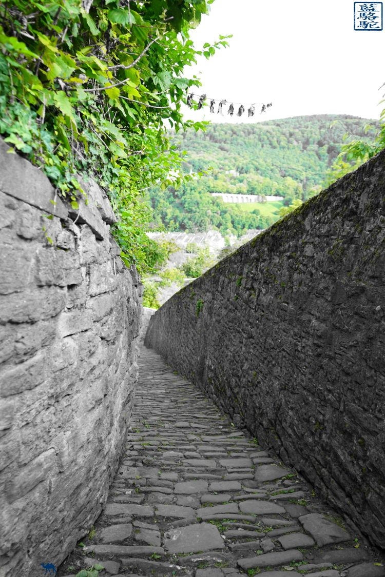 Le Chameau Bleu - Blog Voyage Heidelberg Allemagne - Chemin des philosophes d'Heidelberg - Allemagne