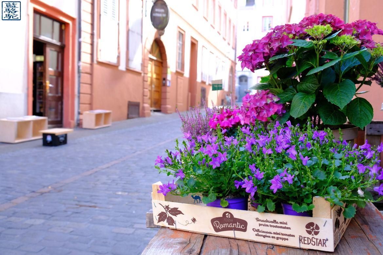 Le Chameau Bleu - Blog Voyage Heidelberg Allemagne - Rue d'Heidelberg - Allemagne