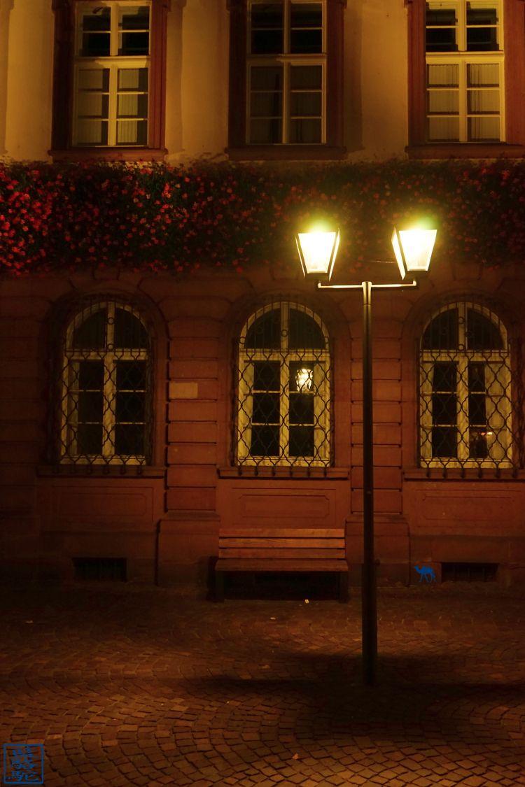 Le Chameau Bleu - Blog Voyage Heidelberg Allemagne - Rue d'Heidelberg by Night - Allemagne