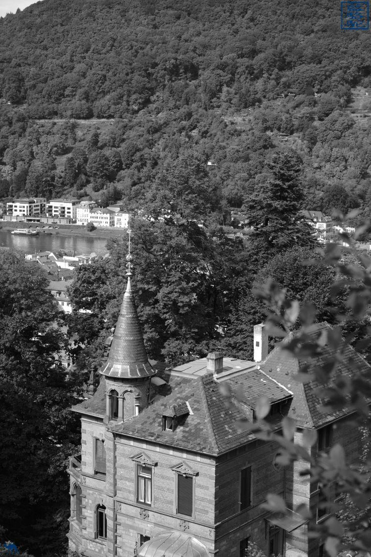 Le Chameau Bleu - Blog Voyage Heidelberg Allemagne - Manoir - Heidelberg - séjour en Allemagne