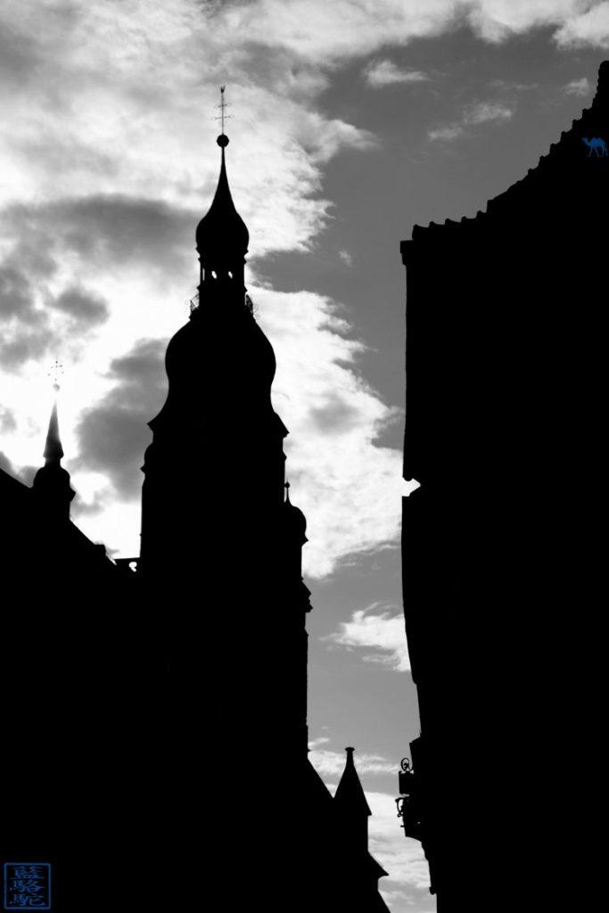 Le Chameau Bleu - Blog Voyage Heidelberg Allemagne - Ombre d'Heidelberg - Allemagne