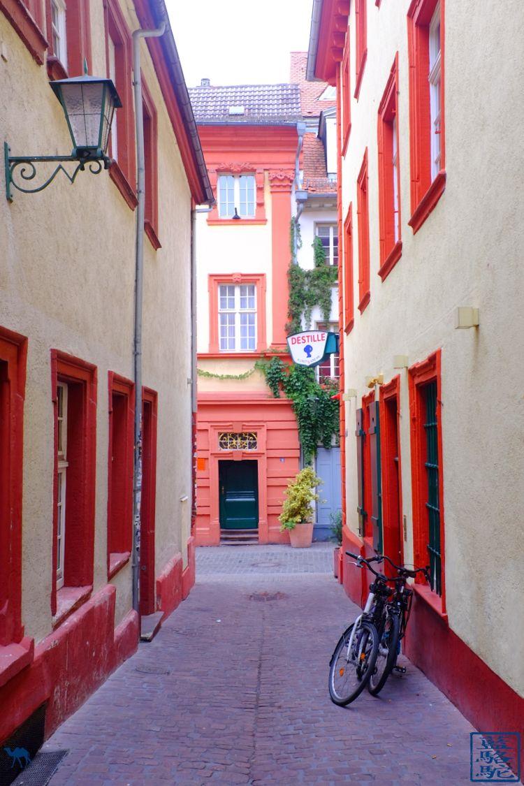 Le Chameau Bleu - Blog Voyage Heidelberg Allemagne - Ruelle - Heidelberg - Week end en Allemagne