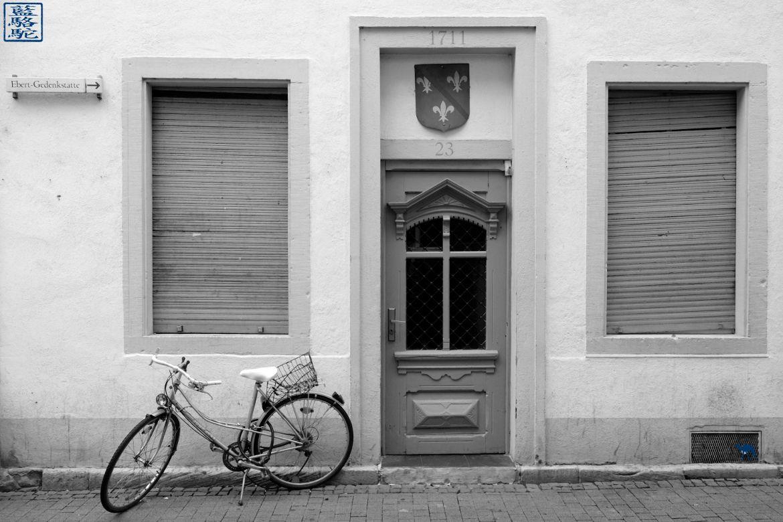 Le Chameau Bleu - Blog Voyage Heidelberg Allemagne - Facade d'Heidelberg - Allemagne