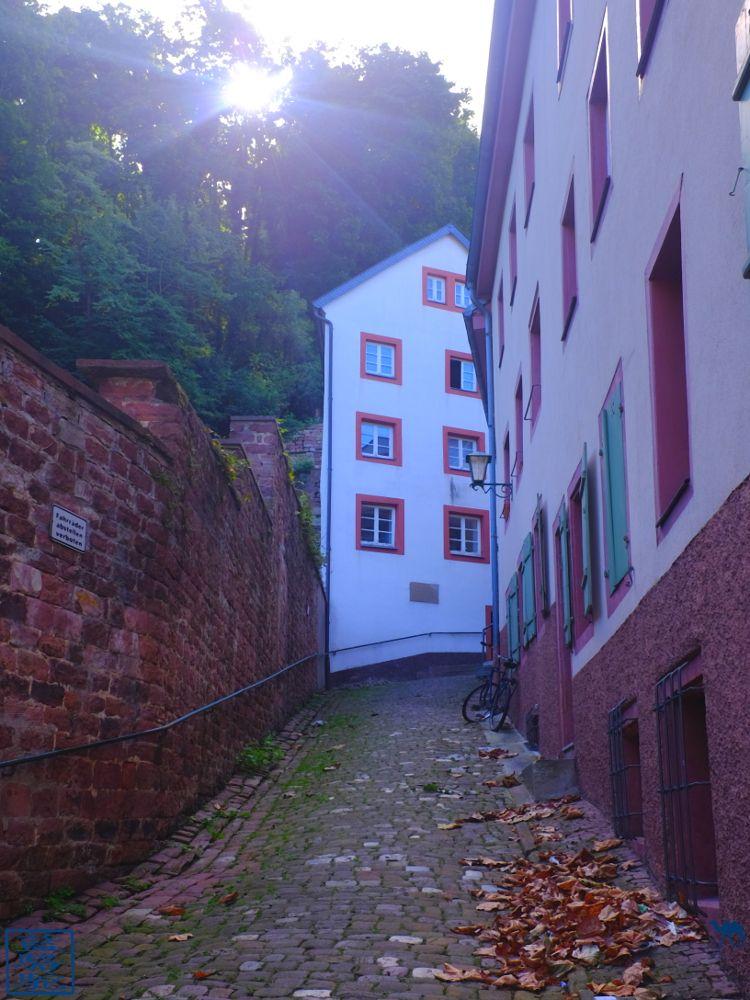Le Chameau Bleu - Blog Voyage Heidelberg Allemagne - Ruelle de la vieille ville - Heidelberg