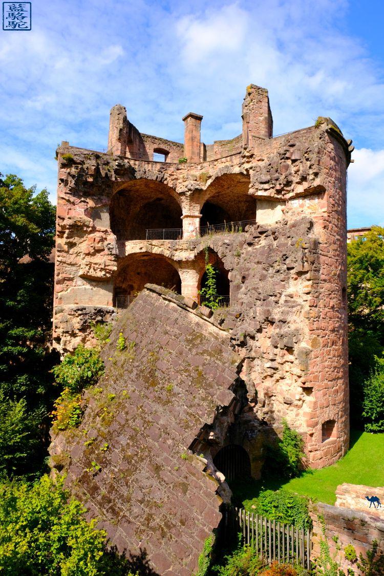 Le Chameau Bleu - Blog Heidelberg - Tour du chateau