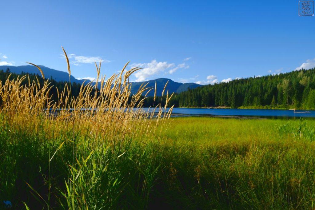 Le Chameau Bleu - Blog Voyage Canada Colombie Britannique - Lost Lake Whistler -Champs