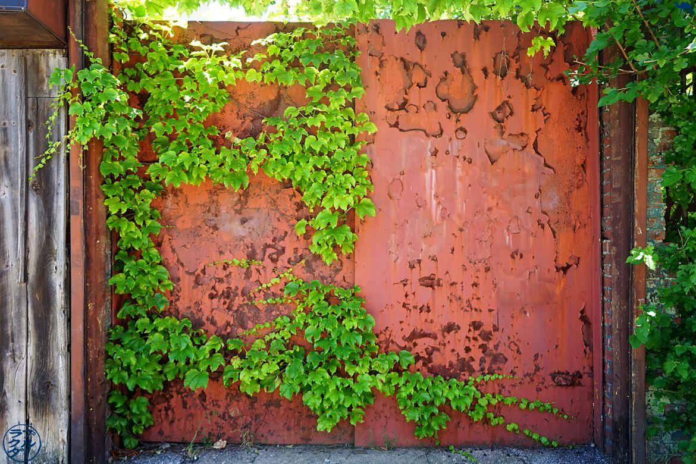 Le Chameau Bleu Blog Voyage New York - Balade a Red Hook Dans Brooklyn New York - Décor du quartier