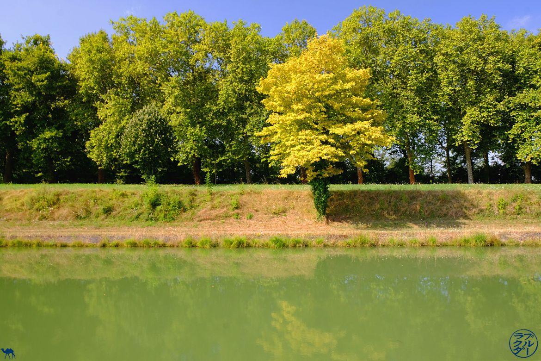 Le Chameau Bleu - Blog Voyage Tarn et Garonne - Paysage sur le Canal des Deux Mers